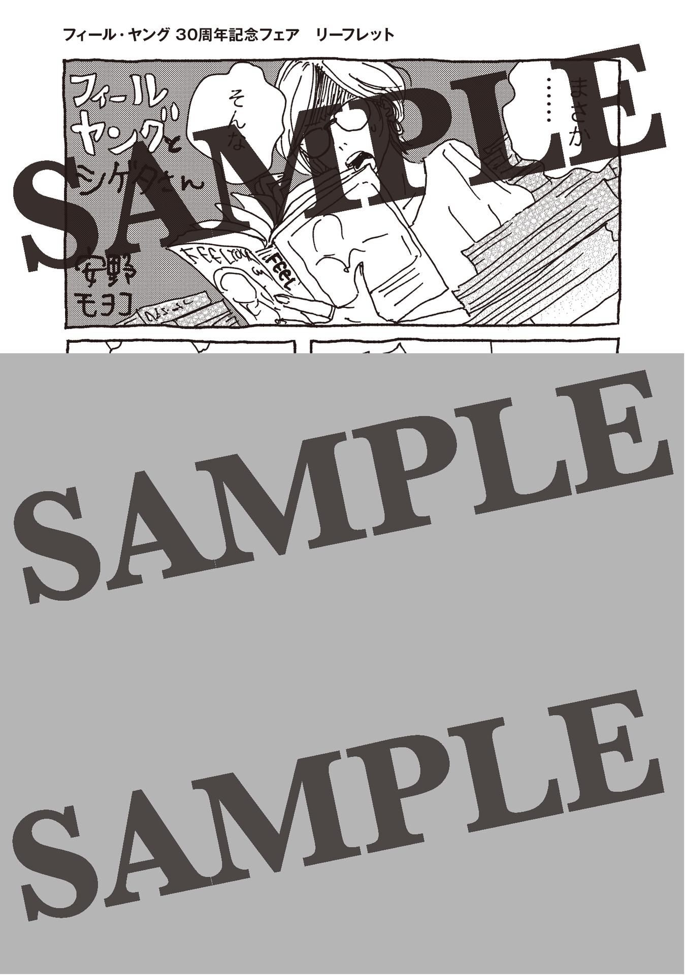 フィールヤング30周年記念フェア_B6_特典用4Pリーフ_SAMPLE.jpg